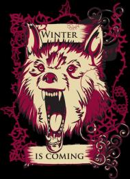 Gra o tron - Winter is coming koszulka damska