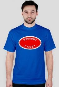 Koszulka Wzorowy facet