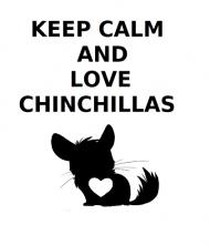 Keep Calm & Love Chinchillas - kubek niebieski