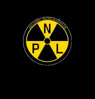 Bluza z kapturem Logo