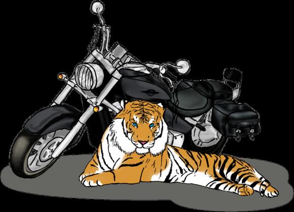 Boulevard Tiger - bluza