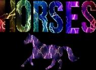 Horses męska