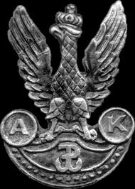 Orzeł AK - bluza