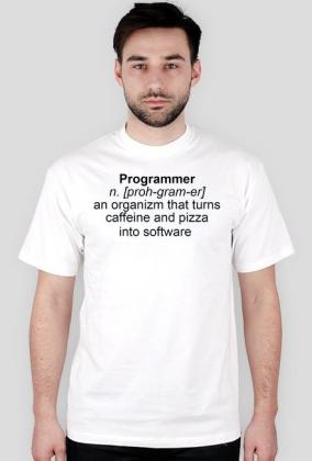 Programmer [proh-gram-er]