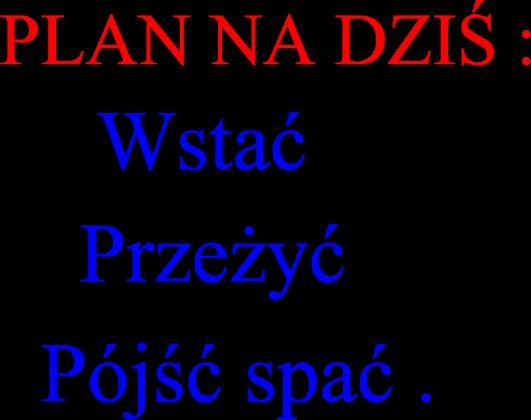 PLAN NA DZIŚ..