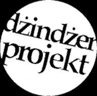 BLUZA męska PLECY z kapturem  DŻINDŻER PROJEKT czarne logo