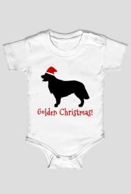 Śpioszek świąteczny - Golden Retriever
