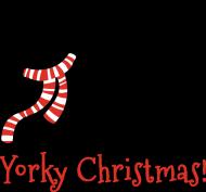 Damski świąteczny top - biały - York