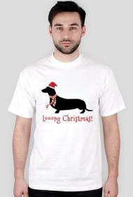 Męska świąteczna koszulka - biała - Jamnik