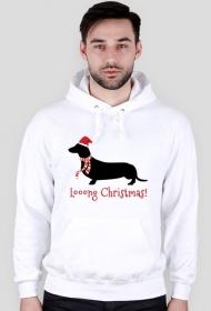 Męska świąteczna bluza (kaptur) - biała - Jamnik
