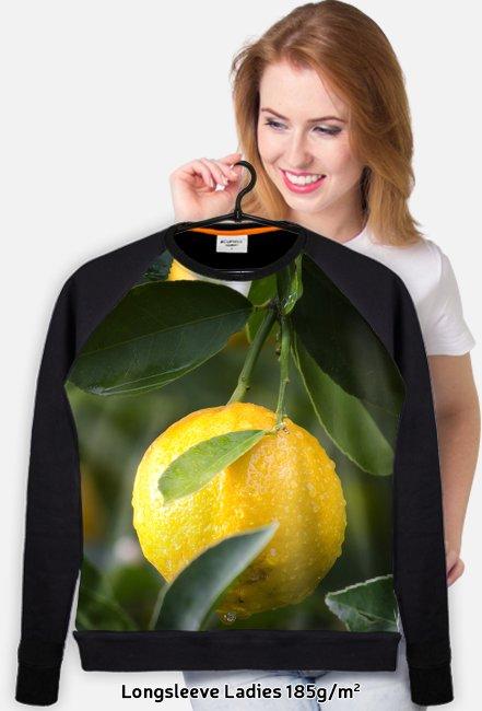 Cytryna Full Print lekka bluza