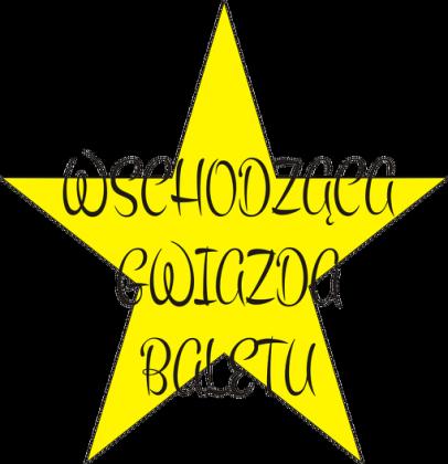 t-shirt: wschodząca gwiazda