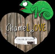 Zakochany kameleon