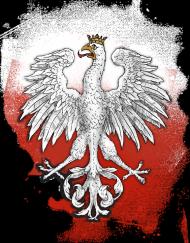 Bluza godło Polski 1917