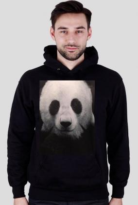 Bluza z kapturem Panda