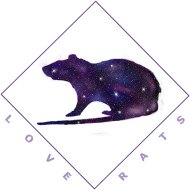 Galaxy Rat T-shirt Men