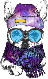 Pies Hipster