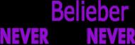 True Belieber - poszewka na poduszke