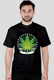 Sativa wear - Lato 2013