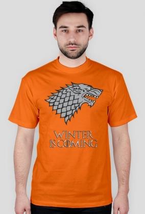 Winter is coming - House Stark - WSZYSTKIE kolory