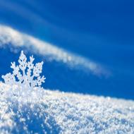 Snowflake Poduszka