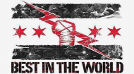 "Miś Cm Punk ""Best In The World"""