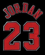 Bezrękawnik Jordan - tył