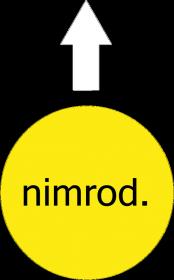 NIMROD - MĘSKA KOSZULKA