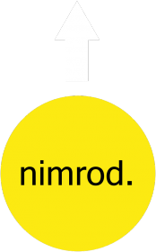 NIMROD - DAMSKA KOSZULKA