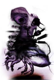 dark creepy insect