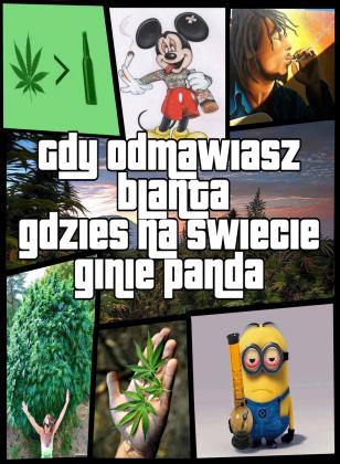 Firmówka :)