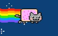 kubek nayn cat