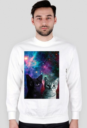 Galaxy Kitty