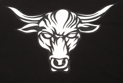 koszulka na bazie WWE superstar THE ROCK
