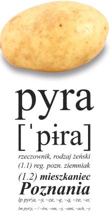 Koszulka Pyra