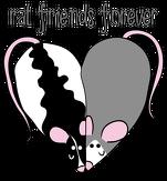 Rat friends forever