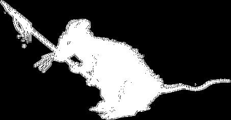 Szczurołap (dwustronna)