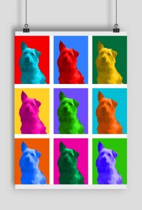 Drops Pop-art - Plakat Obraz MuodeMotywy