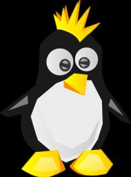 Koszulka Linux Punk