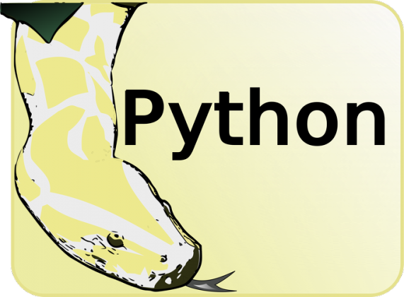 Koszulka Python [programista]